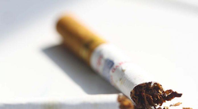 11 Des MUKISI Asupan Ini Dapat Hentikan Kecanduan Merokok