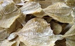 6 Feb Mukisi Konsumsi Ikan Asin Tingkatkan Resiko Kanker Tenggorokan