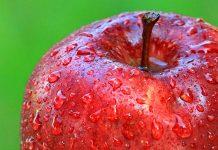 10 Maret MUKISI Wajib Tahu, Inilah Manfaat Cuka Apel Bagi Kesehatan